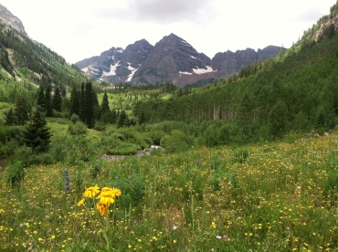 Glorious wildflowers with Maroon Bells