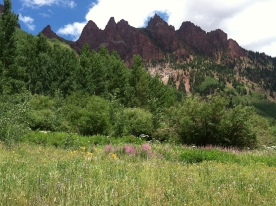 More wildflowers and mountain scenery from the Bells