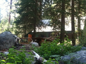 The cabin that built me