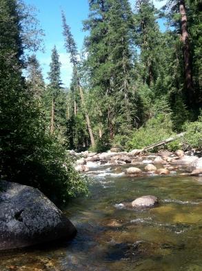 The American River, CA