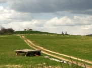 Sheep Farm Egremont