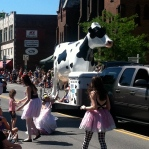 Brattleboro, VT-Strolling of the Heifers Parade