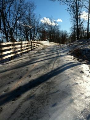 Ice rink pathways...