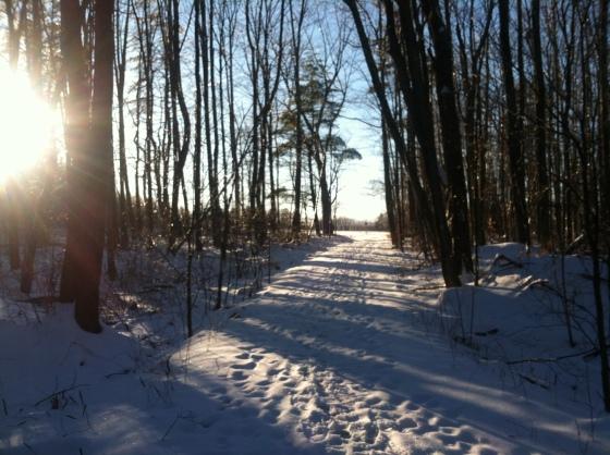 Questing Trail