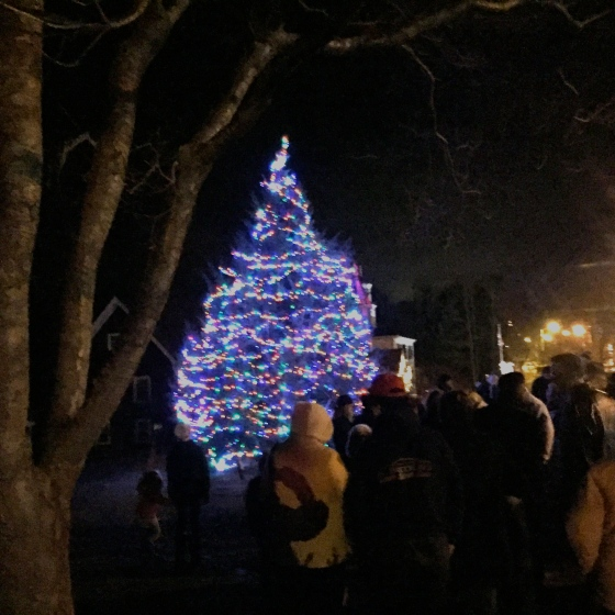 Lighting of the town Christmas tree
